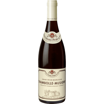 CHAMBOLLE  MUSIGNY  2013  -  BOUCHARD  PERE  ET  FILS