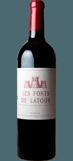 LES FORTS DE LATOUR 2009 - SECONDO VINO DEL CHATEAU LATOUR