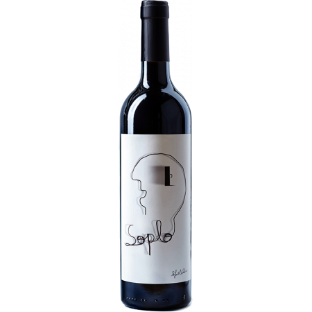 SOPLO 2016 - RAFAEL CAMBRA