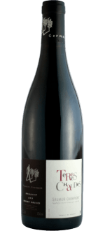 TERRES CHAUDES 2019 - DOMAINE ROCHES NEUVES THIERRY GERMAIN